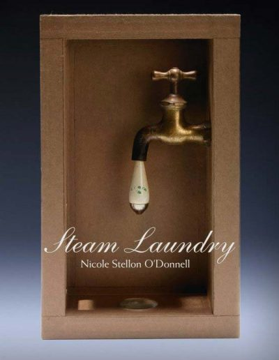 steam_laundry_cover